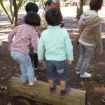 羽根木公園どんぐり探険会2013 レポート